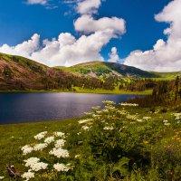 """""""Озеро в горах"""" :: Светлана"""