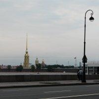 Вид на Петропавловскую крепость с Дворцовой набережной :: Елена Каталина