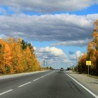 По дороге с облаками :: Алла ZALLA