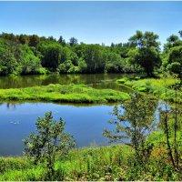 Пейзаж у реки :: Андрей Куприянов