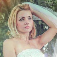 Невеста :: Алла Чернова