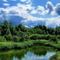 Скоротечны летние дожди... :: Лесо-Вед (Баранов)