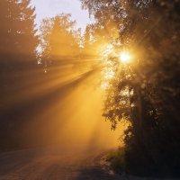 солнце на пыльной дороге... :: Ирэна Мазакина