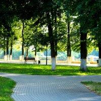В парке :: Андрей Зайцев
