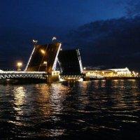 Развод мостов. Дворцовый мост :: Елена Каталина