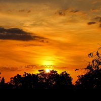 Рассвет за окном.... :: Nataliya Oleinik