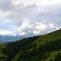 Склон горы :: Marta Shabaykovych