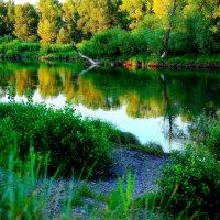 Чистая Вода :: HART BAD