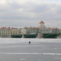 Зимний Петербург. :: Валентина Жукова