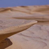 Песчаные акулы Сахары :: Petr Popov