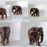 По полочке Слона водили, Как видно напоказ... :: Александр Корчемный