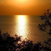 На закате... :: Ирина Бабушкина