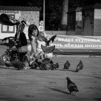 Сынок, давай покормим   голубей :: Оксана Артюхова