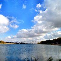 Пейзаж с мостом... :: Тамара (st.tamara)