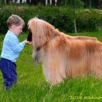 Большой друг маленького человека :: Вадим Кудинов