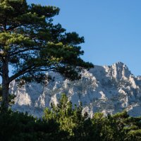пейзаж с видом на горы :: Сергей Зенцев