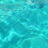 Лазурная Море Египта)) :: Александр Кузин