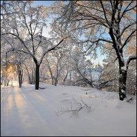 Зима :: Василий Микульский