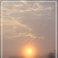 Туманное утро :: Олег Загорулько
