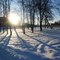 Мороз и солнце 3 :: Григорий Ганзбург
