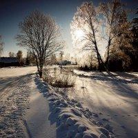 зимние зарисовки в контр-ажуре :: Павел Преснов