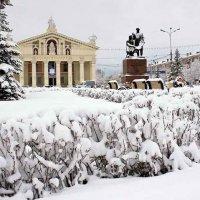 зимнее фото :: ксения дубовцева