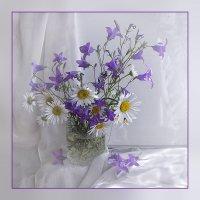 Полевые цветы... :: Luis-Ogonek *