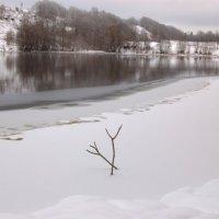 На берегу у замёрзшей реки :: Олег Загорулько