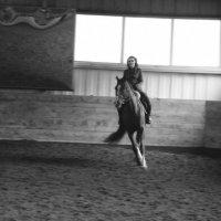 Horse :: Maria Burdina