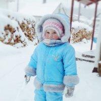 пришла зима :: Наталия Бурмистрова