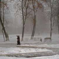 Утренняя прогулка :: Татьяна Кандрушина