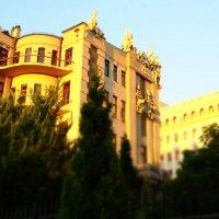 Дом с химерами :: Vsemila Iva