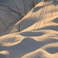 зима :: Камозина Валерия