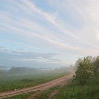 Туман :: Олег Загорулько