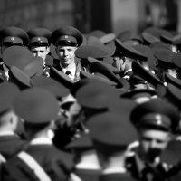 Ольга Балашова - Три тополя из серии Молодость Армия