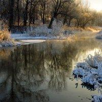 Первый мороз :: Анастасия Сесорова
