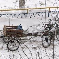 Экологически чистый транспорт на территории бывшего СССР :: Михайло Шпак