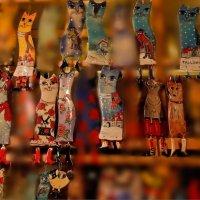 Таллиннские коты. :: Лана Григорьева