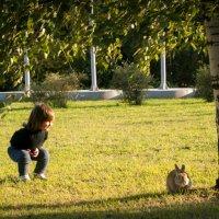 В парке :: Михаил Ананич