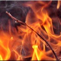 Сгораю в пламени костра :: Ирина Таболина