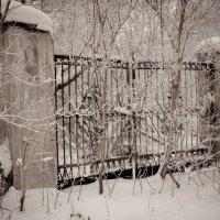 Старые ворота... :: игорь козельцев