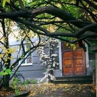 Дверь :: Olga Kopacheva