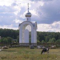 Ордынский район :: Олег Мещеряков