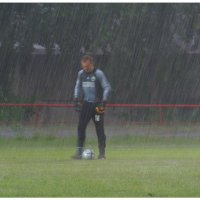 Вратарь  дождя :: Геннадий Тарасков