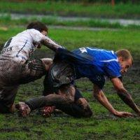 Борьба  за  мяч :: Геннадий Тарасков