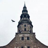 Рига :: Вячеслав Алкопона