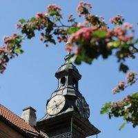 Часы на башне :: Василий Гущин