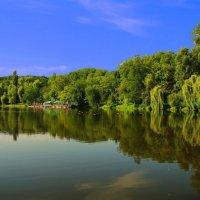 Ореховатские пруды :: igor G.