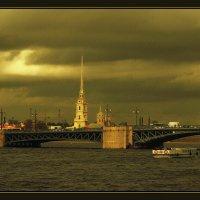 Вид на Петропавловскую крепость :: Диана Буглак