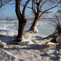 Скованные льдами :: Dr. Olver